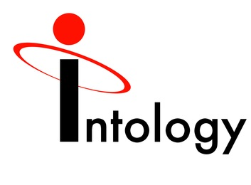 Intology Icon